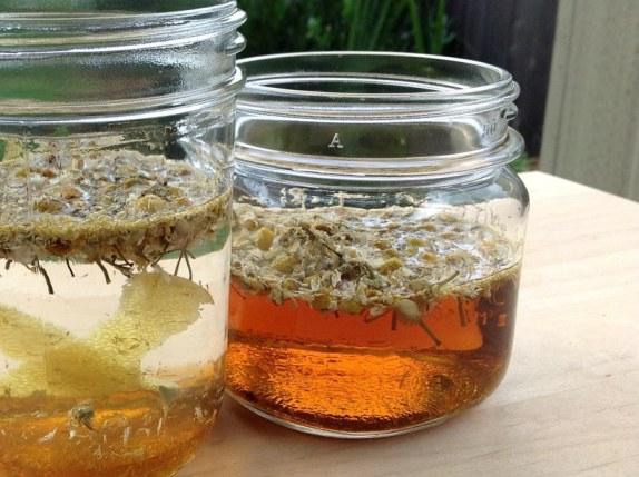 chamomile-infusions