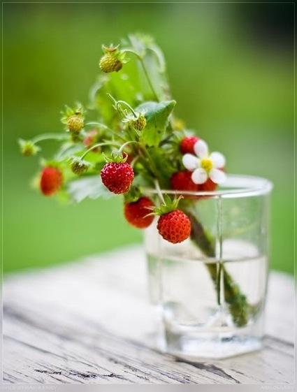 5-strawberry-inspiration