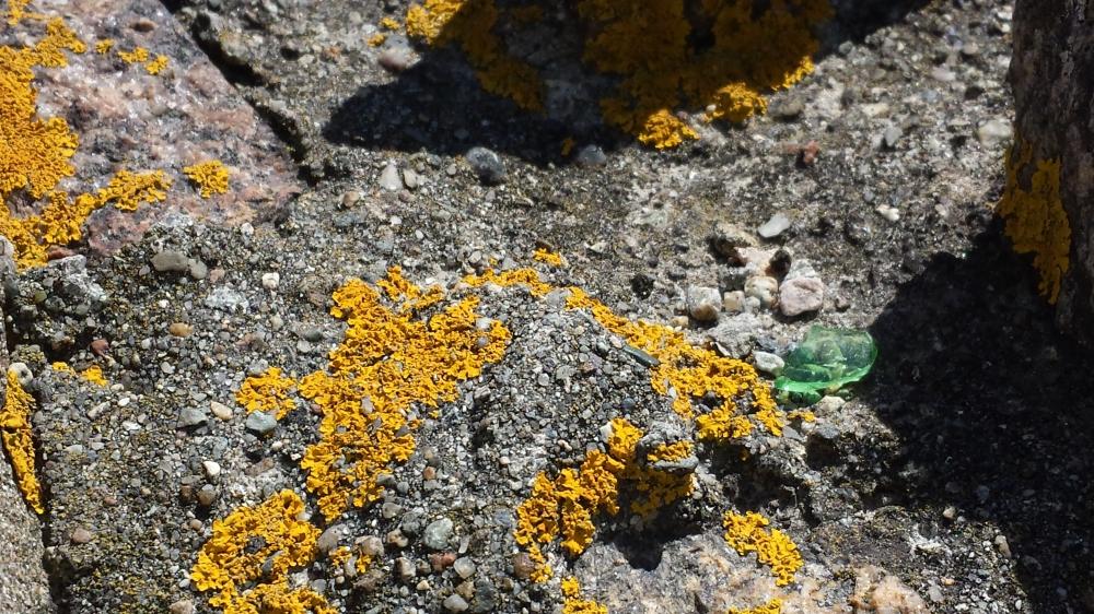 sea glass and moss