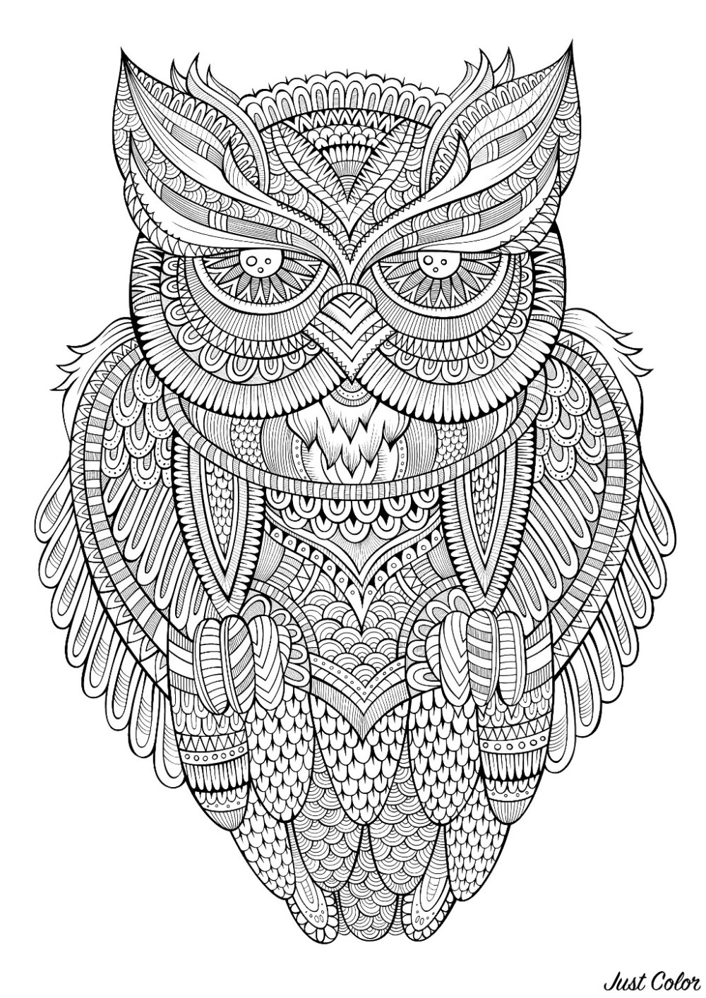 wt2-coloring-page-owl-antistress